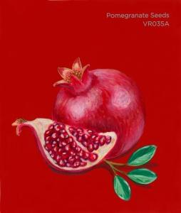 pomegranate seeds786