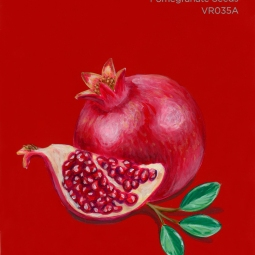 pomegranate seeds786