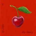 shy cherry799