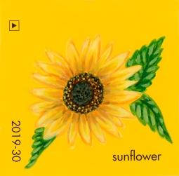 sunflower823
