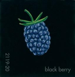 black berry855
