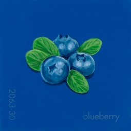 blueberry850