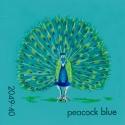 peacock blue877