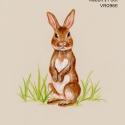 rabbit's foot899