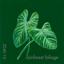 rainforst foliage878