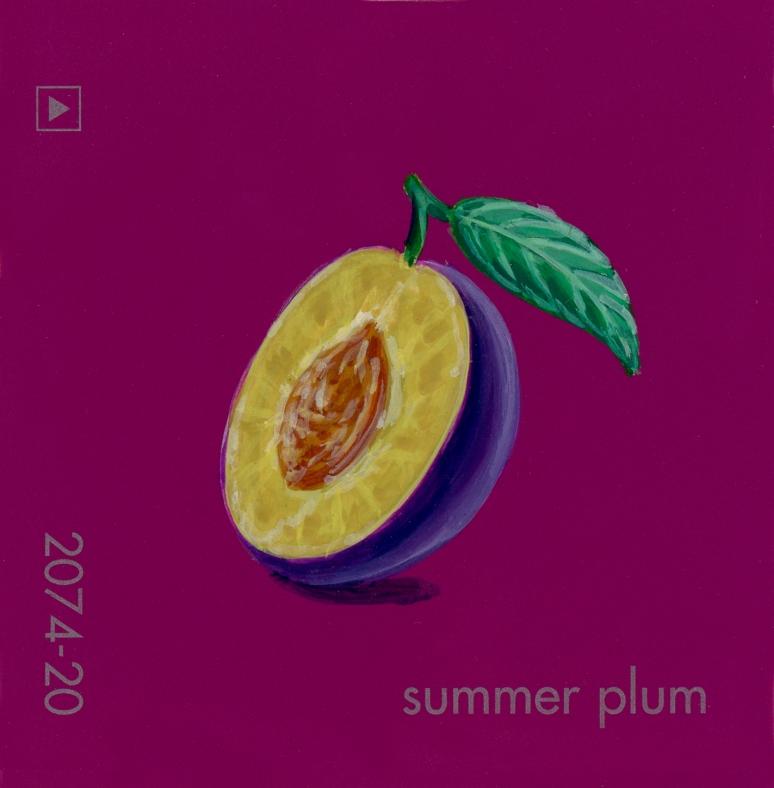 summer plum854