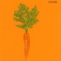 carrot stick999
