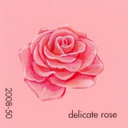 delicate rose932