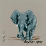 elephant gray977