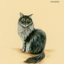 fuzzy scruff993