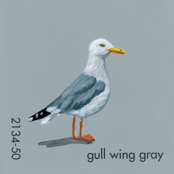 gull wing gray959