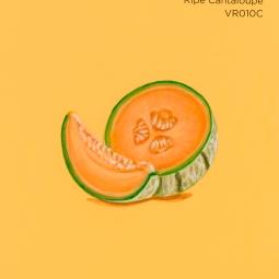 ripe cantaloupe938