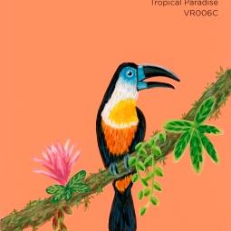 tropical paradise845