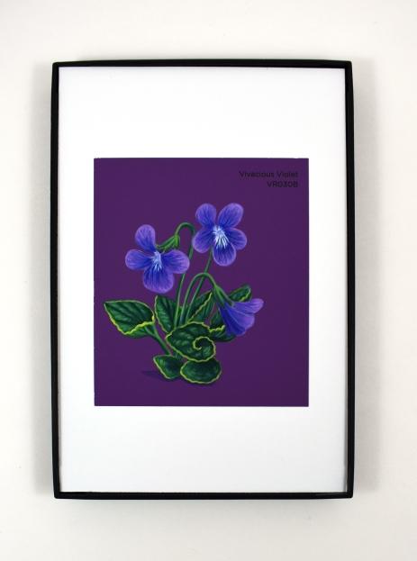 vivacious violet