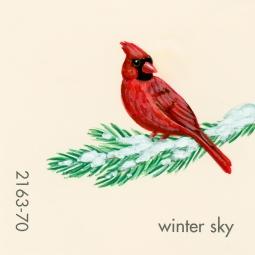 winter sky981