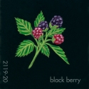blackberry084
