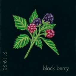 blackberry084
