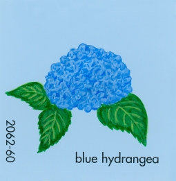 blue hydrangea041