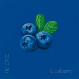 blueberry080
