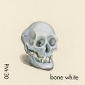 bone white162