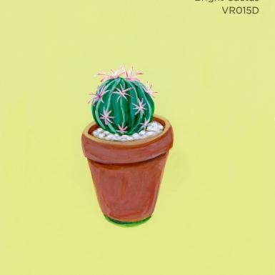 bright cactus059