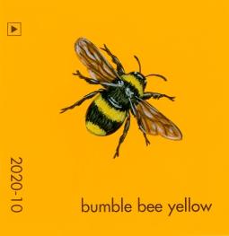 bumble bee yellow224