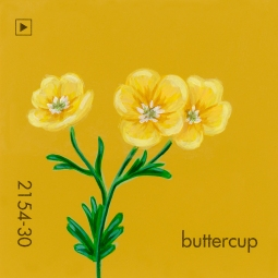 buttercup050