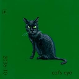 cat's eye167