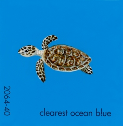 clearest ocean blue188