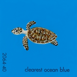 clearest ocean blue188