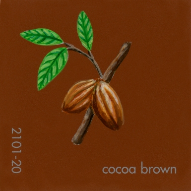 cocoa brown044