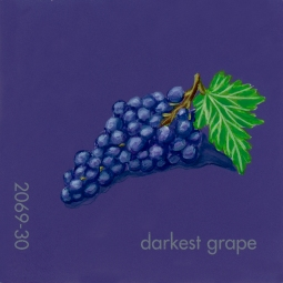 darkest grape021
