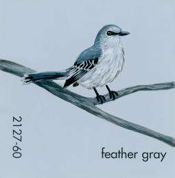 feather gray042