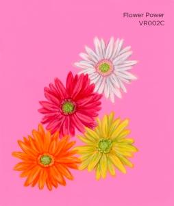 flower power058