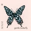 gentle butterfly029