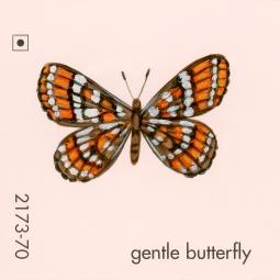 gentle butterfly219