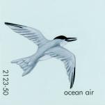 ocean air026