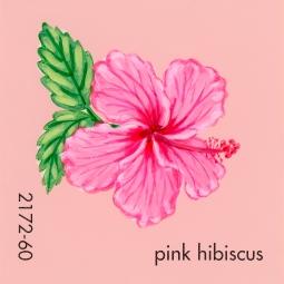 pink hibiscus052