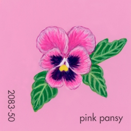 pink pansy209