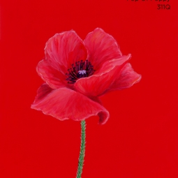 pop of poppy069