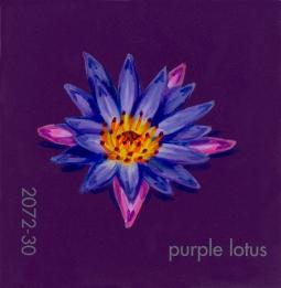 purple lotus218