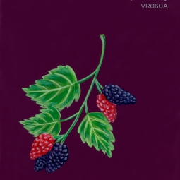 ripe mulberry106