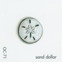sand dollar168