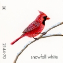 snowfall white182