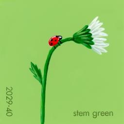 stem green049