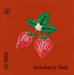 strawberry field081