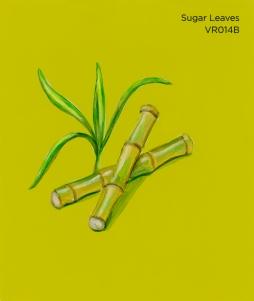 sugar leaves066