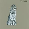tabby cat gray197