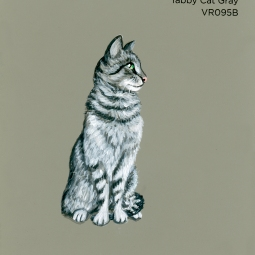 tabby cat gray197