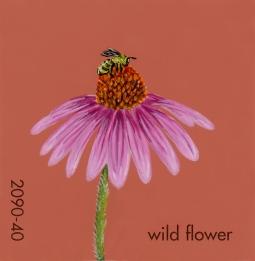 wildflower214